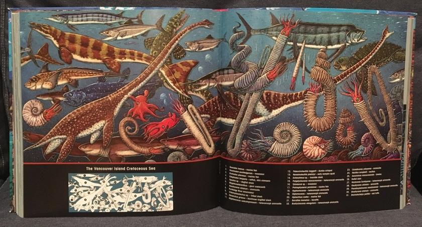 prehistoric sea life