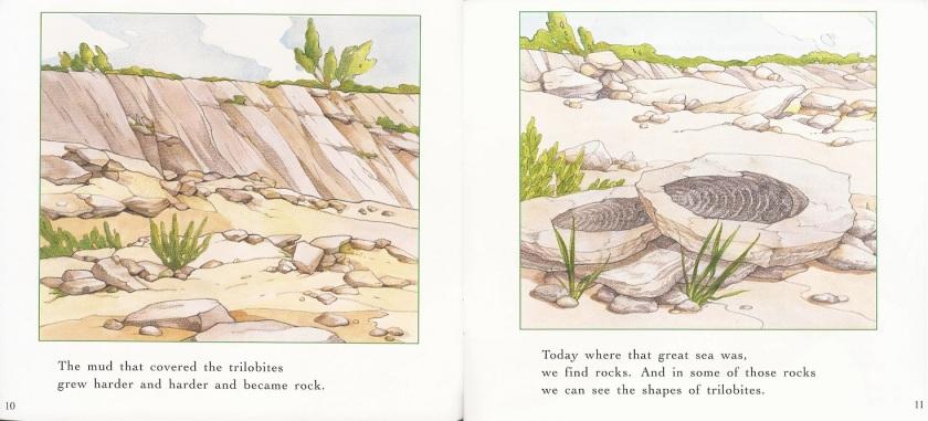 Trilobites 3