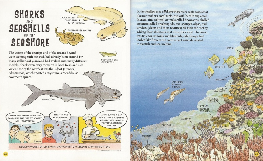 Carboniferous & Permain sharks