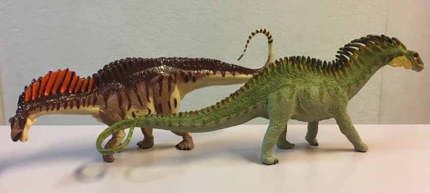 Amargasaurus comparison