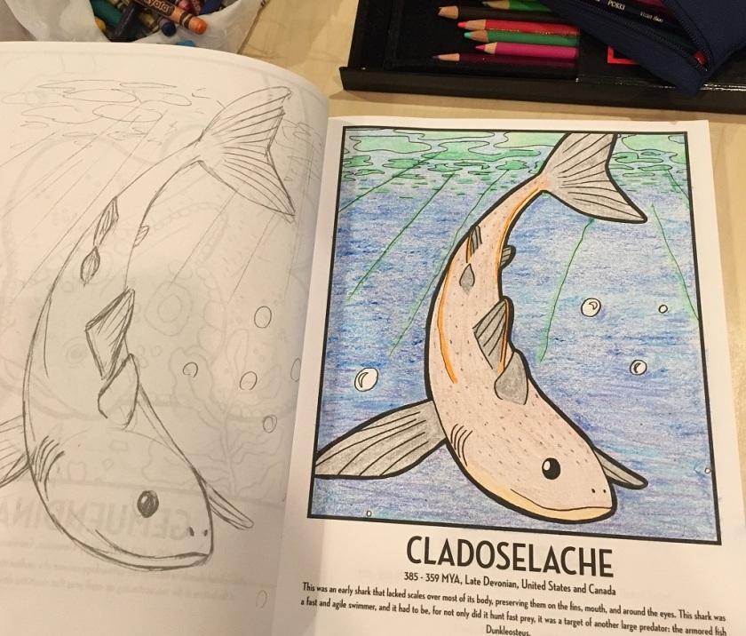 Cladoselache
