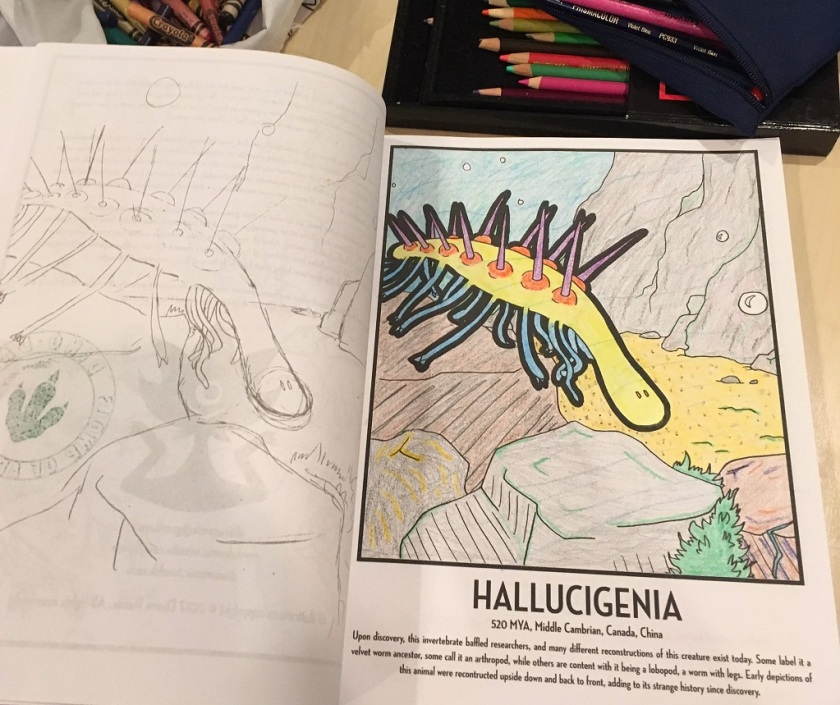Hallucigenia