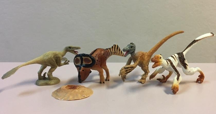raptors vs protoceratops