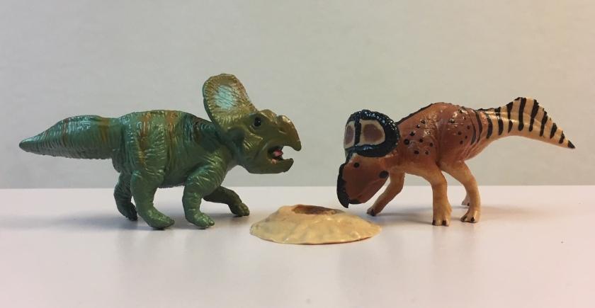 safari and wild past